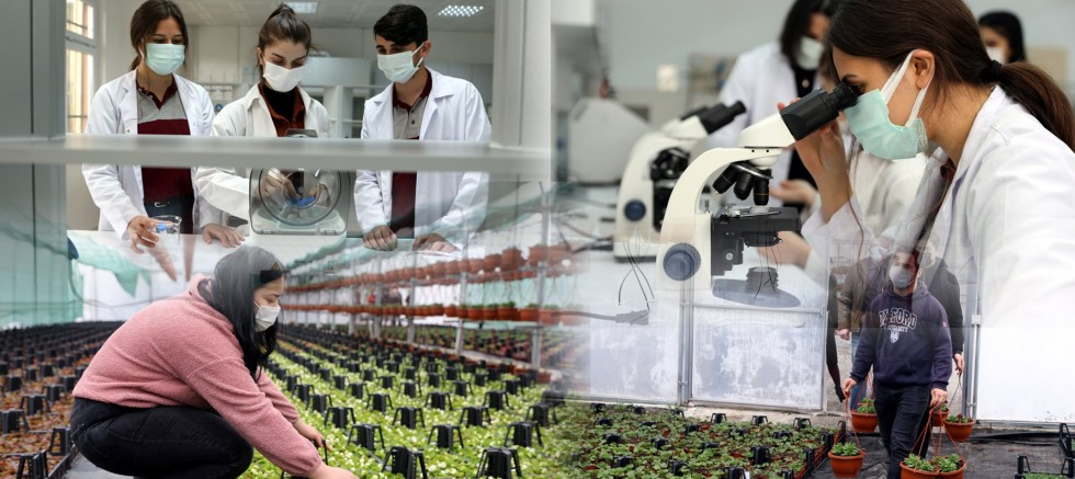 Liselerin seralarında yetiştirilen süs bitkileri